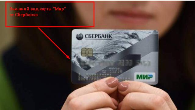 Как оплатить покупку в интернет-магазине по карте Сбербанка